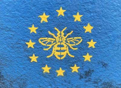 comisia-europeana-ofera-apicultorilor-120-de-milioane-de-euro