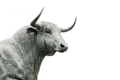 madr-ofera-sprijin-financiar-pentru-crescatorii-de-bovine