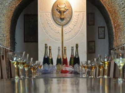 patronatele-din-industria-vinului-cer-acciza-zero-pentru-vinurile-spumante