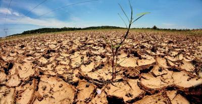 ministerul-mediului-nu-vom-avea-taxa-auto-in-2020