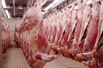 statistici-numarul-animalelor-sacrificate-in-luna-februarie