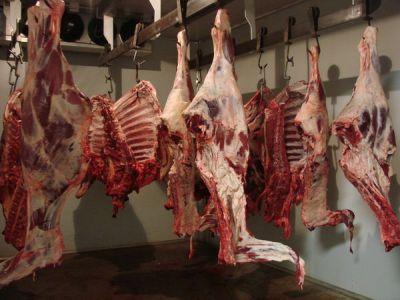 statistici-numarul-animalelor-sacrificate-in-luna-ianuarie-2013