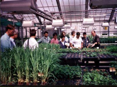asociatia-tanarul-fermier-sprijina-insertia-studentilor-pe-piata-muncii