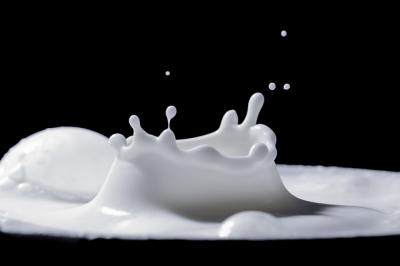 studiu-sectorul-lactatelor-si-al-branzeturilor-din-romania-prea-concentrat