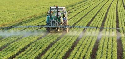 substante-regulatoare-de-crestere-si-modul-lor-de-actiune-asupra-plantelor-legumicole