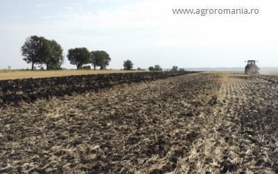 avansul-din-subventia-pe-suprafata-va-fi-platit-din-16-octombrie-cat-va-primi-fermierul
