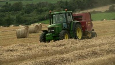 iata-sectoarele-considerate-prioritare-dupa-2014-bovine-legume-fructe-orez-sfecla-de-zahar