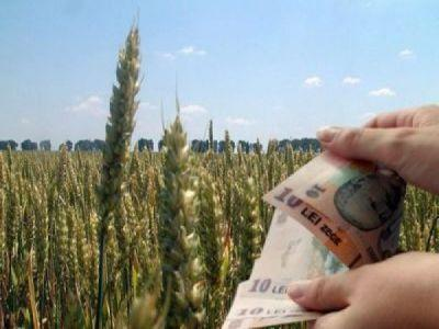 aproape-13-miliarde-de-euro-alocate-agriculturii-romanesti-din-bani-europeni-intre-2007-si-2013