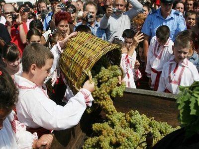 tamaioasa-romaneasca-de-pietroasa-vedeta-concursului-de-vinuri-strugurele-de-aur