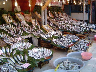 pescia-luna-aceasta-se-da-startul-celui-mai-mare-festival-national-al-pestelui