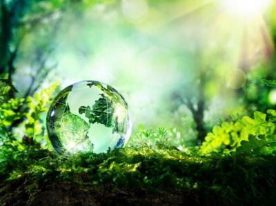 ey-taxele-pe-mediu-pot-ajuta-la-reducerea-poluarii