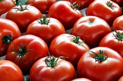 statistici-agricultura-2013-comertul-cu-legume-fructe-in-perioada-ianuarie-aprilie-2013