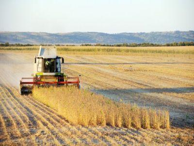 fermierii-trebuie-sa-detina-cel-putin-un-hectar-de-teren-agricol-pentru-a-primi-subventii-de-la-apia