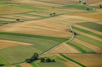 aproximativ-5-din-terenurile-agricole-din-romania-lucrate-de-straini
