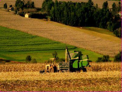 romania-are-unul-din-cel-mai-mari-potentiale-agricole-insa-productivitatea-e-nesatisfacatoare