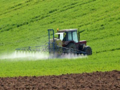 cec-bank-in-2013-s-a-manifestat-un-interes-deosebit-pentru-terenurile-agricole