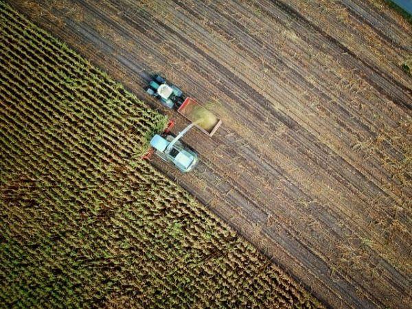 se-modifica-legea-privind-vanzarea-terenurilor
