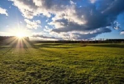 conditiile-pentru-instrainarea-terenurilor-agricole-vor-fi-negociate-in-toamna