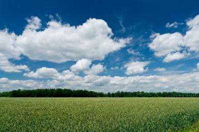 investitorii-straini-sunt-atrasi-de-terenurile-agricole-din-romania