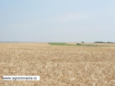 terenuri-agricole-2014-traian-basescu-a-retrimis-la-parlament-legea-terenurilor