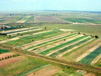 AGRICULTURAL LAND ROMANIA: Leasing your farm land can bring you profit