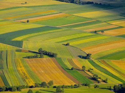 noi-modificari-legislative-in-privinta-garantarii-creditelor-pentru-achizitionarea-de-terenuri-agricole