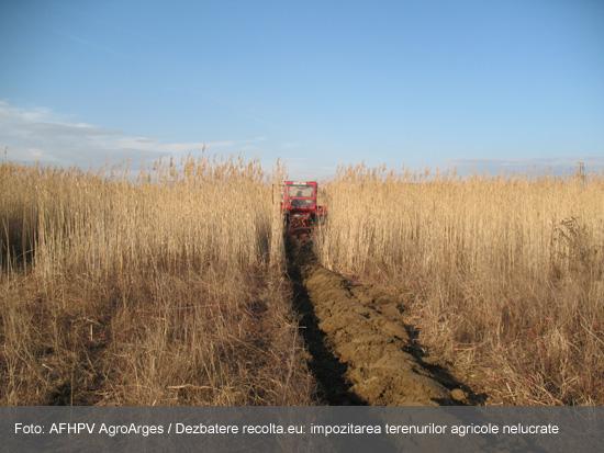 impozitul-pe-terenurile-agricole-nelucrate