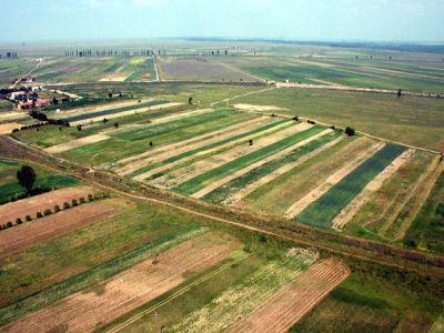 reguli-noi-pentru-vanzarea-terenurilor-rudele-vor-avea-intaietate-la-vanzare