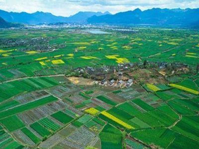 terenurile-agricole-vor-avea-prioritate-la-cadastrare