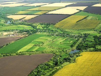 functionarii-statului-implicati-in-fraude-de-700-000-de-euro-cu-terenuri-agricole