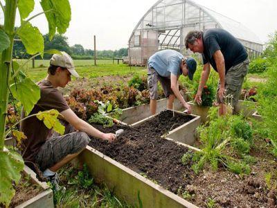 modificari-ale-procedurilor-afir-in-sprijinul-tinerilor-fermieri-si-micilor-fermieri