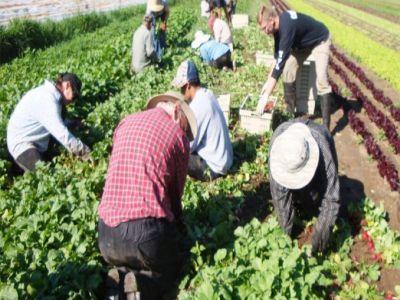 madr-cauta-solutii-pentru-a-i-pastra-pe-tineri-in-mediul-rural