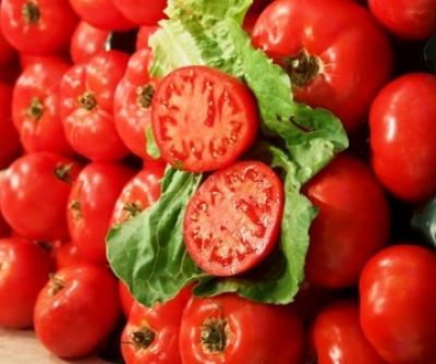 tehnologia-productiei-de-camp-la-tomate