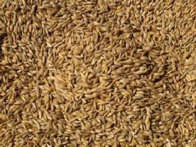 transporturile-de-produse-cerealiere-au-fost-verificate-de-politisti