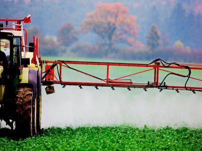 fermierii-romani-nu-dispun-de-o-varianta-alternativa-pentru-utilizarea-neonicotinoidelor