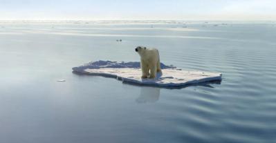 peste-11000-de-oameni-de-stiinta-spun-ca-ne-aflam-intr-o-criza-climatica