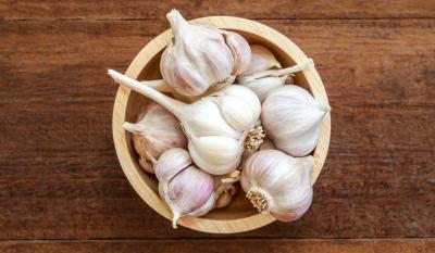madr-mareste-sprijinul-pentru-hectarul-de-usturoi