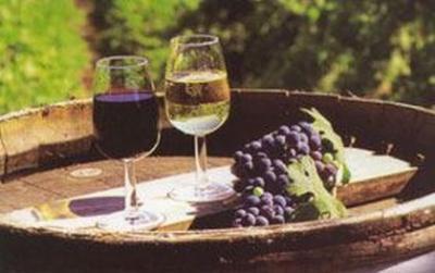 regulamentul-european-privind-liberalizarea-importului-de-vinuri-din-moldova