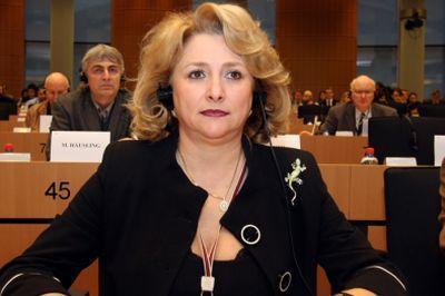 un-europarlamentar-roman-atrage-atantia-asupra-intarzierii-depunerii-proiectului-de-buget-pac-pe-2014