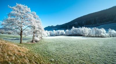 prognoza-agrometeorologica-pentru-perioada-17-23-decembrie-2020